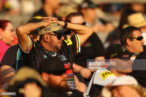 Panthers supporter watches on during the round 11 NRL match between the Penrith Panthers and the Gold Coast Titans at Pepper Stadium on May 22 2016...