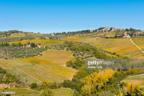 Panzano in Chianti, Florence province, Tuscany, Italy