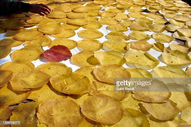 papad indian food drying under sun - drying stock pictures, royalty-free photos & images