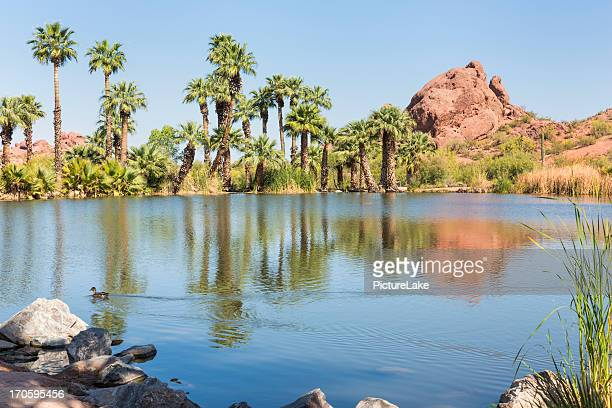 パパゴパーク、アリゾナ州フェニックス