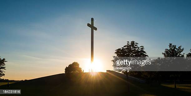 Papal Cross Phoenix