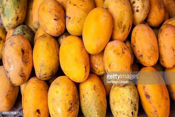 Papaya fruit for sale on market