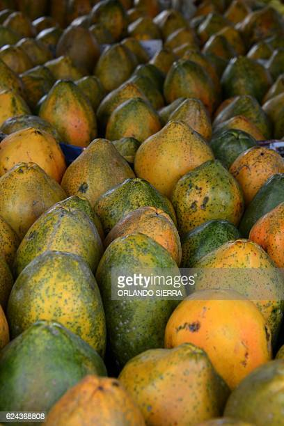 Papayas are offered at the farmer's fair in Tegucigalpa on November 19 2016 / AFP / ORLANDO SIERRA