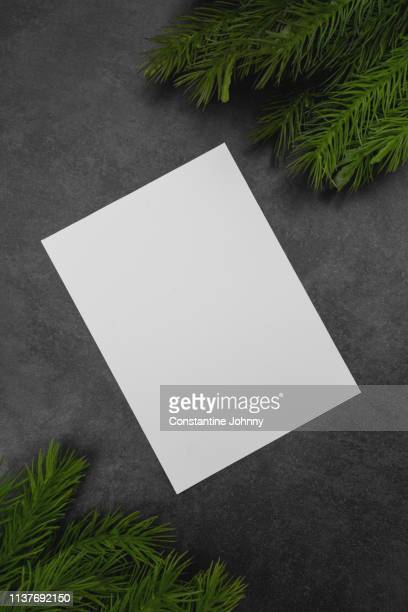 paper and sprigs of fir over dark gray stone background. - greeting card stock pictures, royalty-free photos & images