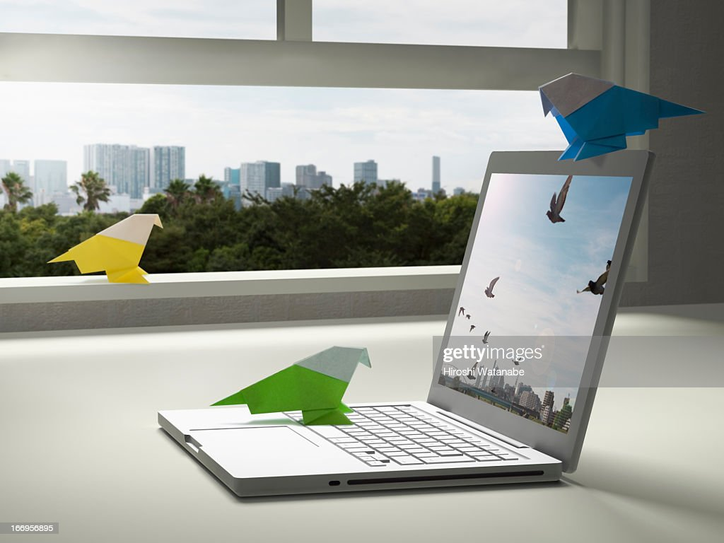 Paper bird is tweeting with a laptop PC : Stock Photo