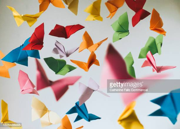 paper butterflies - freedom stock pictures, royalty-free photos & images
