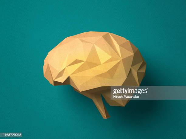 paper craft brain - wisdom stock pictures, royalty-free photos & images