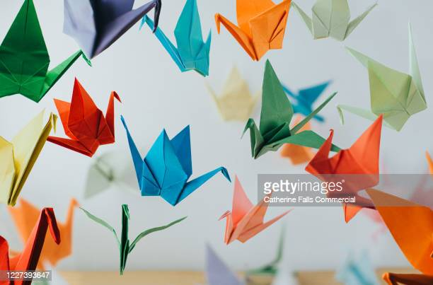 paper cranes - mammal stock pictures, royalty-free photos & images