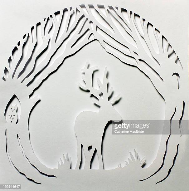 paper cutting of a deer in trees - catherine macbride stock pictures, royalty-free photos & images