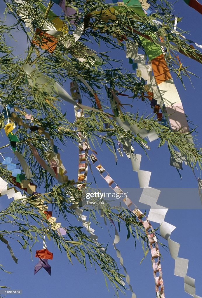 Paper Decorations Tied to Bamboo Fronds During the Tanabata (Star) Festival : ストックフォト