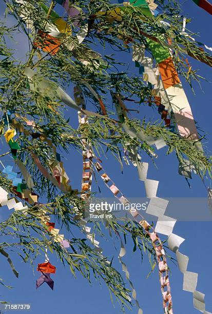 Paper Decorations Tied to Bamboo Fronds During the Tanabata (Star) Festival