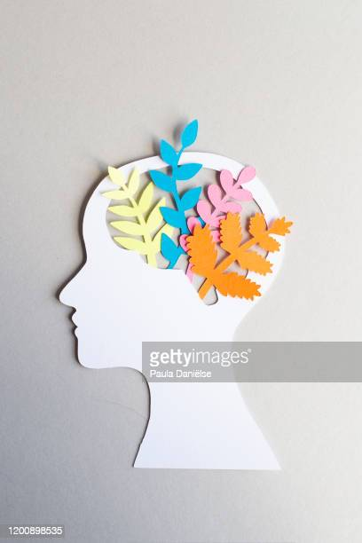 paper head with flowers brains - mental wellbeing stock pictures, royalty-free photos & images