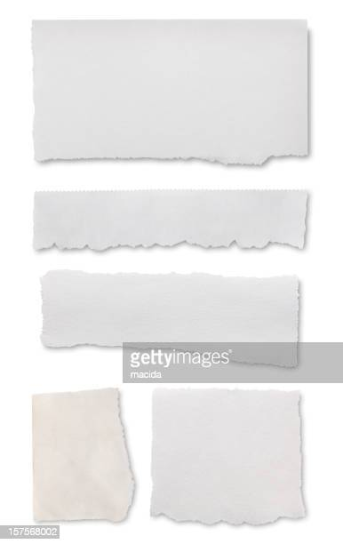 Paper teared into rectangular pieces