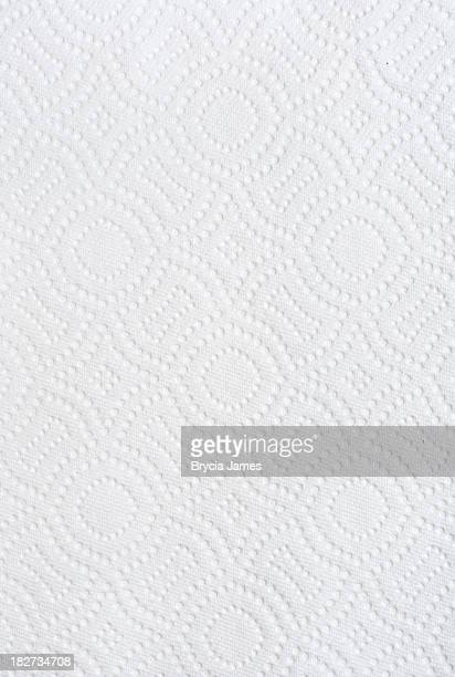 Paper Towel Texture/Background