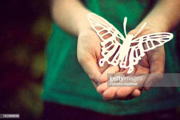 paper wings - catherine macbride stock pictures, royalty-free photos & images