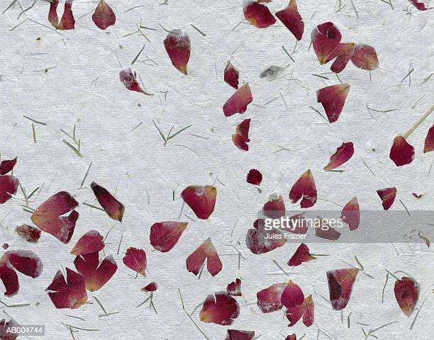 Paper with Grass and Flower Petals