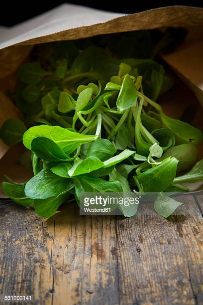 Paperbag of lambs lettuce, Valerianella locusta, on wood