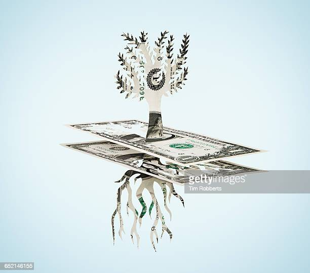 Paper-cut dollar - Tree and roots.