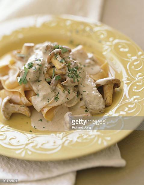 Pappardelle with mushroom veal ragout