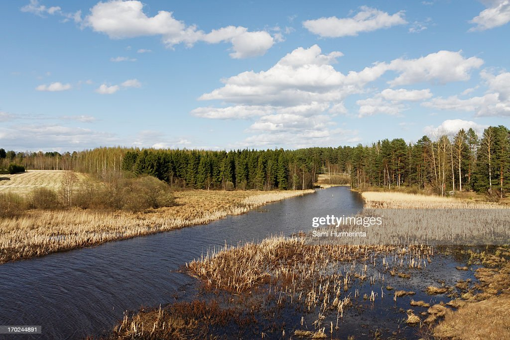 Pappilanjoki River on a sunny spring day : Stock Photo