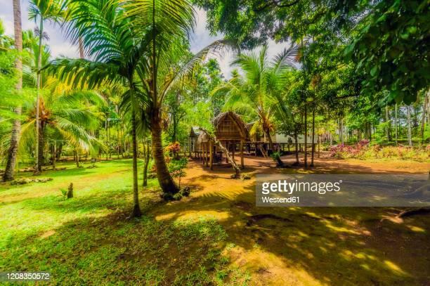 papua new guinea, trobriand islands, kitava island, huts - ilhas do pacífico imagens e fotografias de stock