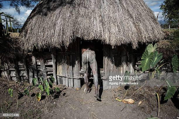 Papuanese tribal man prepares himself on the Honai during the 25th Baliem Valley festival on August 7, 2014 in Wamena, Indonesia. The Baliem Valley...