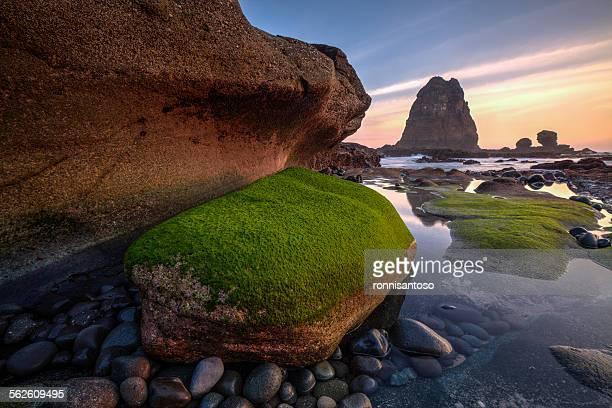 Papuma Beach, Jember, Jawa Timur, Indonesia