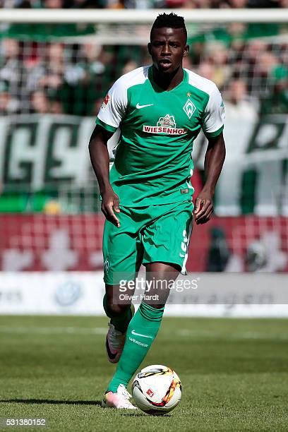 Papy Djilobodji of Bremen in action during the Bundesliga match SV Werder Bremen and Eintracht Frankfurt at Weserstadion on May 14 2016 in Bremen...