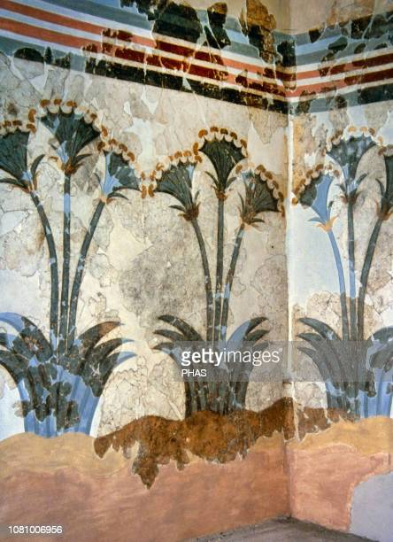Papyrus Fresco, ca. 1550 BC. Minoan. Bronze Age. From Akrotiri, Island of Thera . Three stemmed, blossoming plants are painted on the walls. Room of...