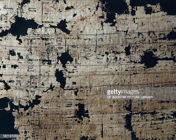 Papyrus recording food supplies list of temple workers and of the work to be done 135 x13 cm from the funerary temple of NeferirkareKakai at Abusir...