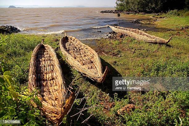 Papyrusboats in Lake Tana