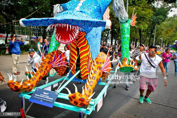 discovery mexico city - alebrije stock pictures, royalty-free photos & images