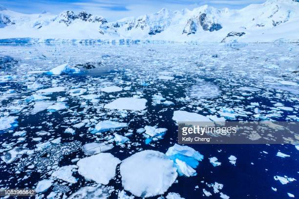 paradise bay in antarctica - global warming stock pictures, royalty-free photos & images