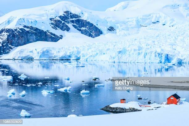 paradise bay in antarctica - antarctic peninsula stock pictures, royalty-free photos & images