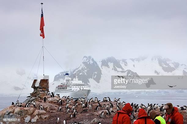 Paradise Bay Tourist And Gentoo Penguin Colony