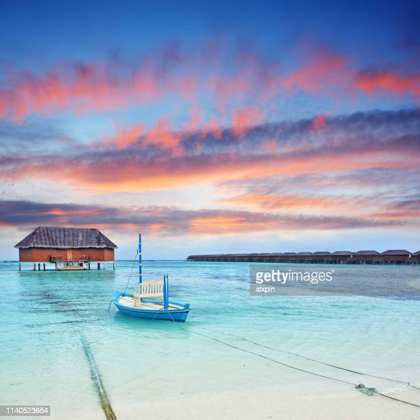 paradise beach at sunset - pacific islands stock pictures, royalty-free photos & images