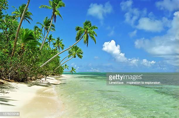 Paradise beach at Uiha Island, Tonga