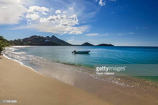 paradise beach, granada w.i. - paisajes de isla de  granada fotografías e imágenes de stock