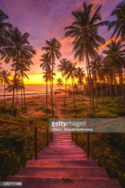 paradise beach in thailand - tropical island sunset stock pictures, royalty-free photos & images