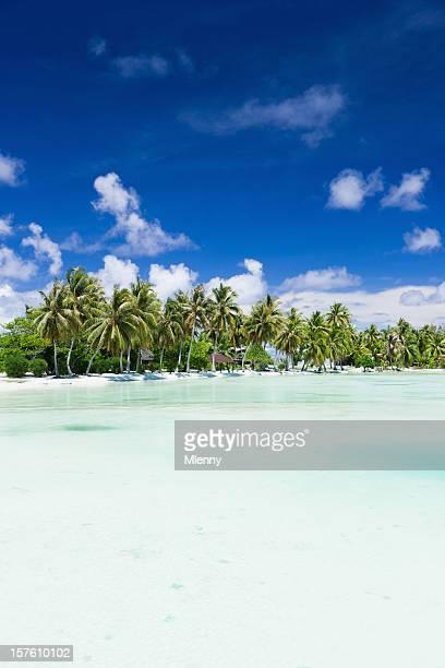 lagoa de férias de verão praia paraíso - bora bora imagens e fotografias de stock