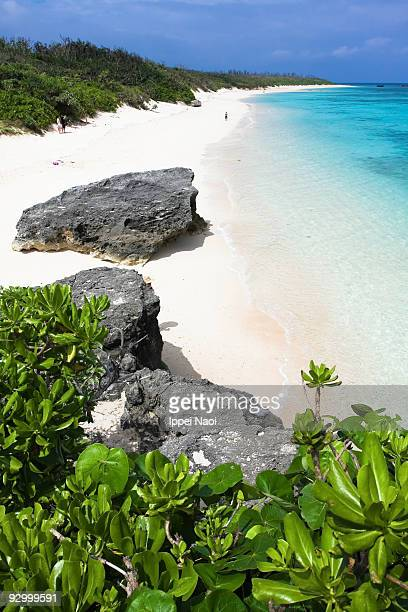 paradise beach with blue clear water of okinawa - ippei naoi stock photos and pictures