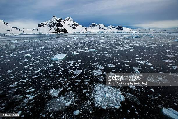 Paradise Harbor (Paradise Bay), Antarctic Peninsula, Antarctica