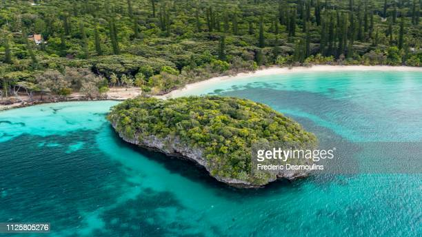 paradise islande in new caledonia - new caledonia stock photos and pictures