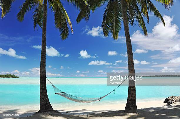paradise lagoon - hammock stock photos and pictures