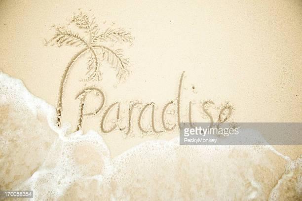 Paradise Message avec palmier sur la plage tropicale