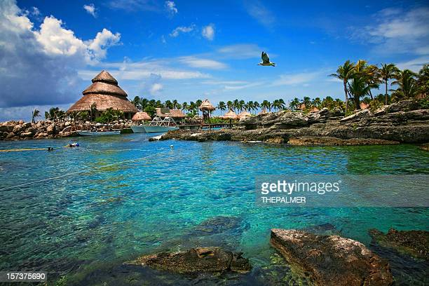 paradise on earth - quintana roo stock pictures, royalty-free photos & images