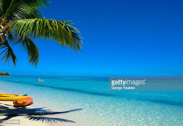 paradise - fiji stock pictures, royalty-free photos & images