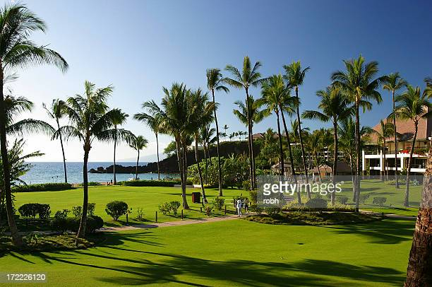 paradise - four seasons stock pictures, royalty-free photos & images