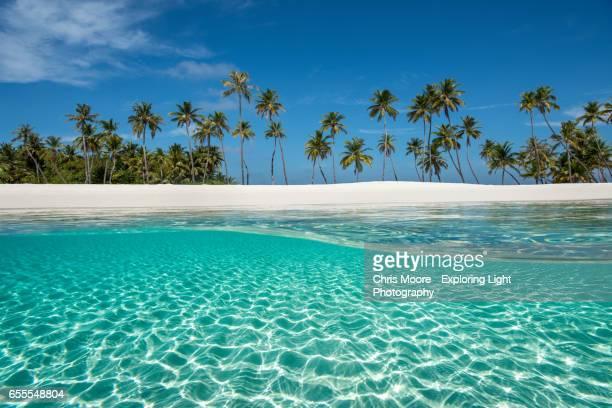 paradise - isole maldive foto e immagini stock