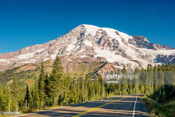 paradise valley road in mount rainier national park washington usa - mt rainier stock pictures, royalty-free photos & images
